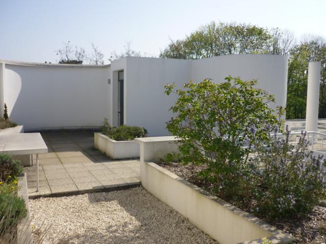 Roof Garden Villa Savoye